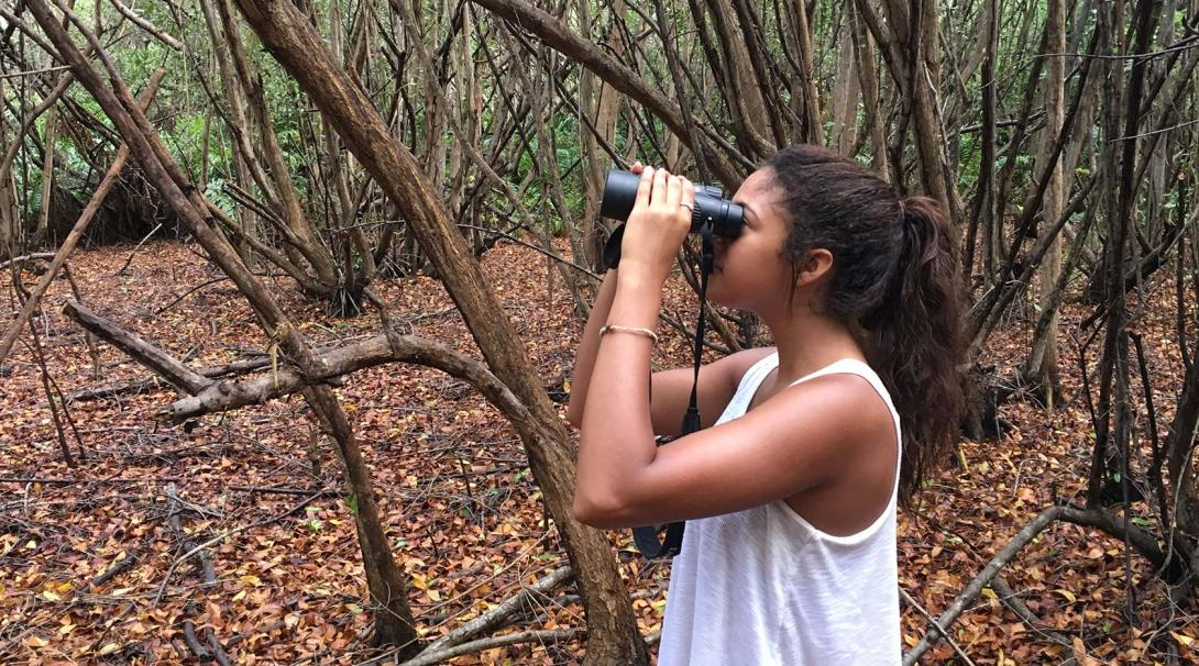 A Projects Abroad Conservation volunteer in Mexico looking through binoculars during a bird survey.